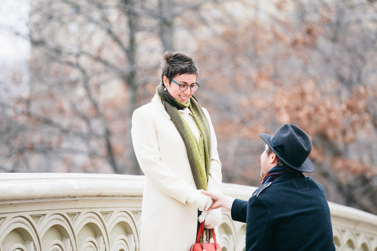 Special Proposal on Bow Bridge   New York City
