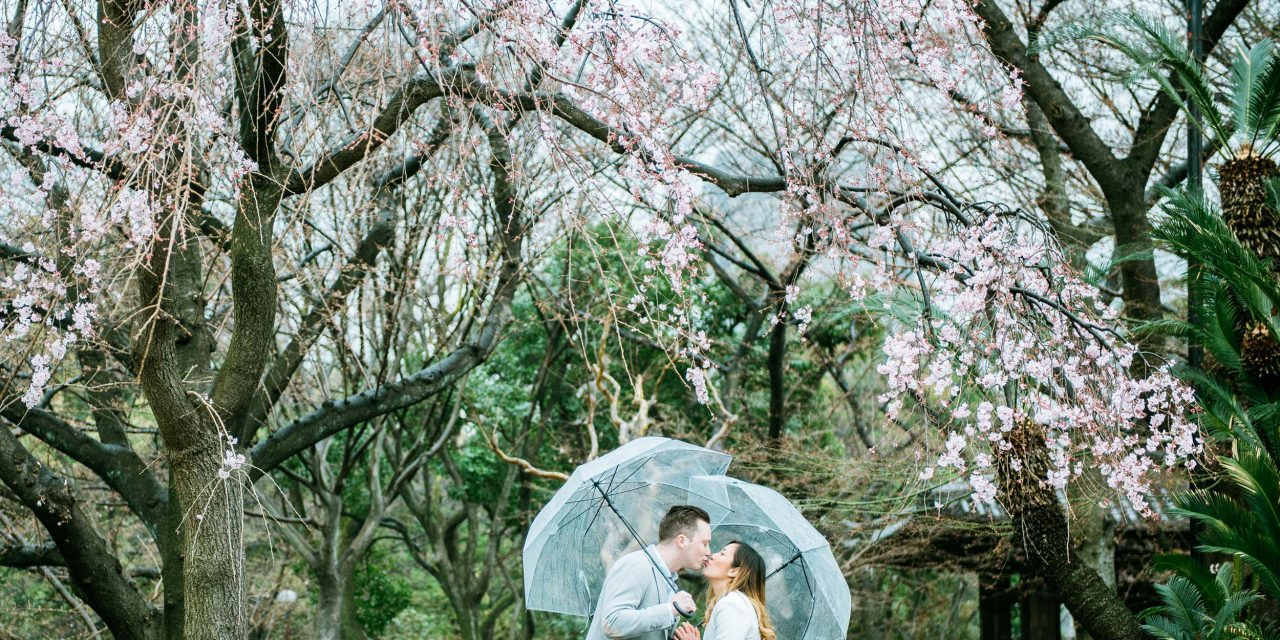 A Tokyo Anniversary Under the Cherry Blossoms