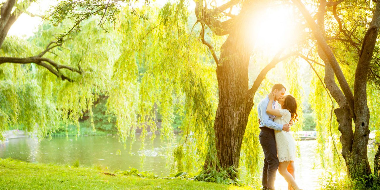 A Dreamy, Sun-Dappled Central Park Engagement