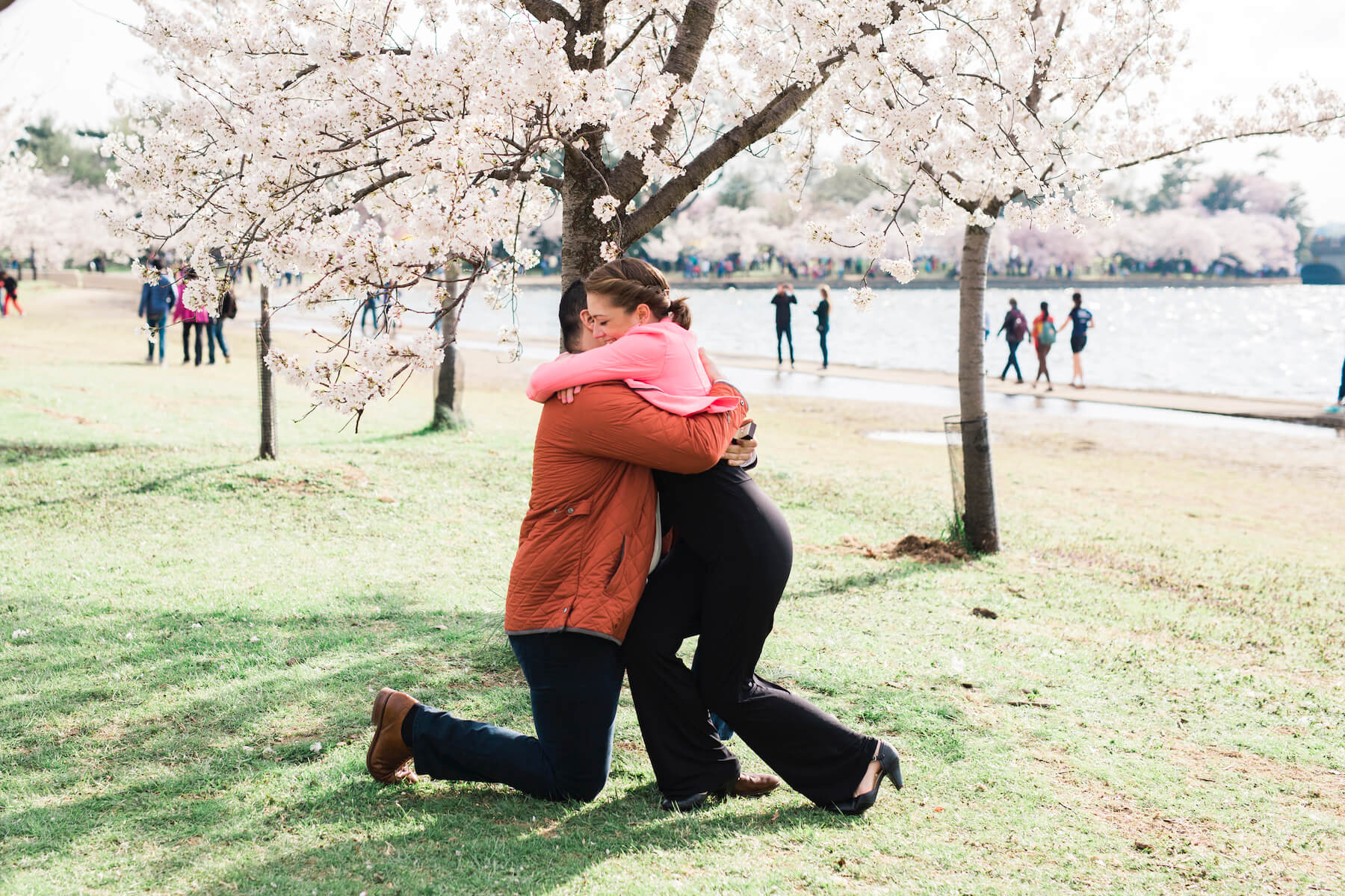 Couple hugging under cherry blossom trees in a park in Washington, DC, USA