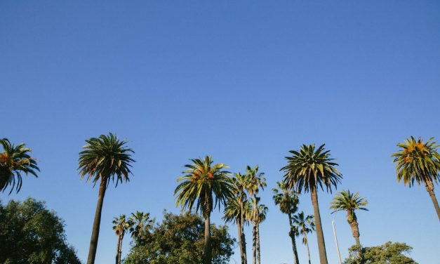 Best Things to Do in Los Angeles – Guide to Visiting Los Angeles