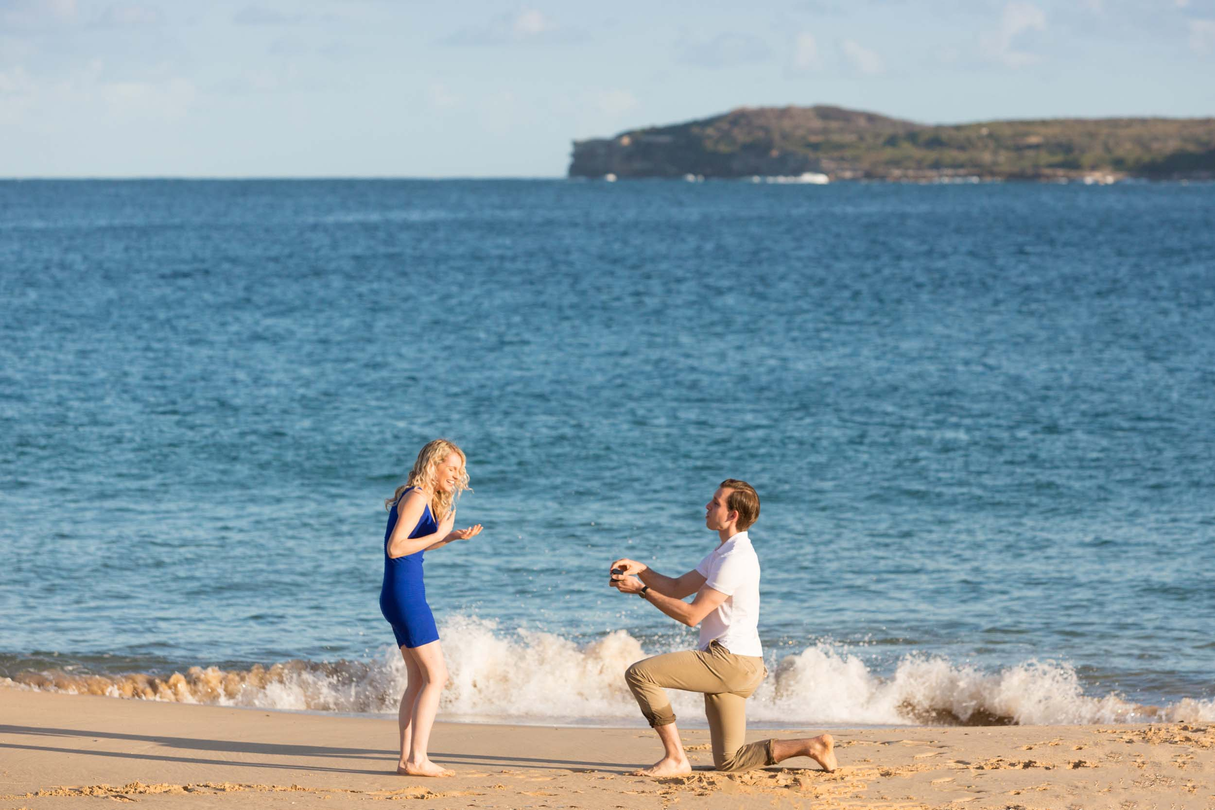How A Dog in Sydney Brought This Couple's Proposal Ideas to Life
