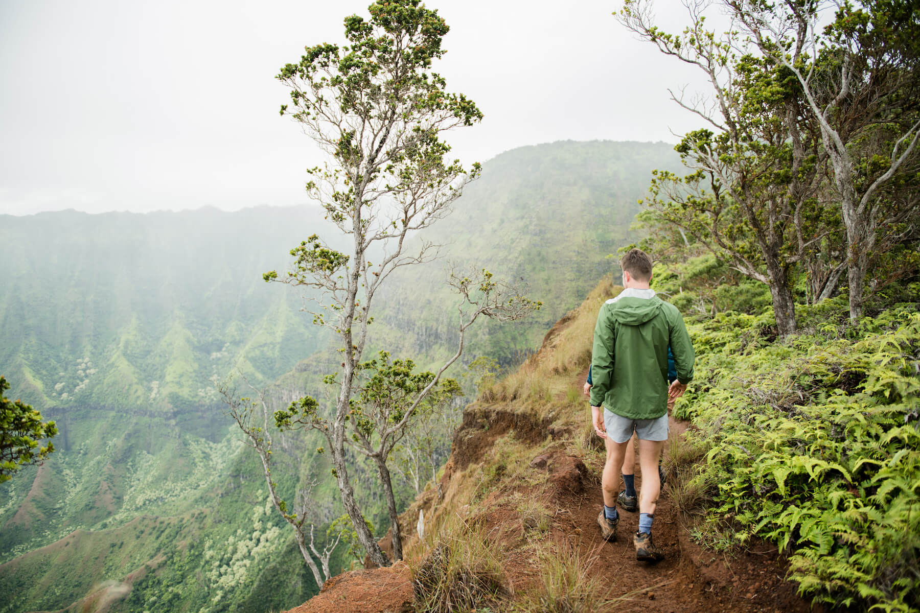 Guys on a hike in Kauai Hawaii monutian