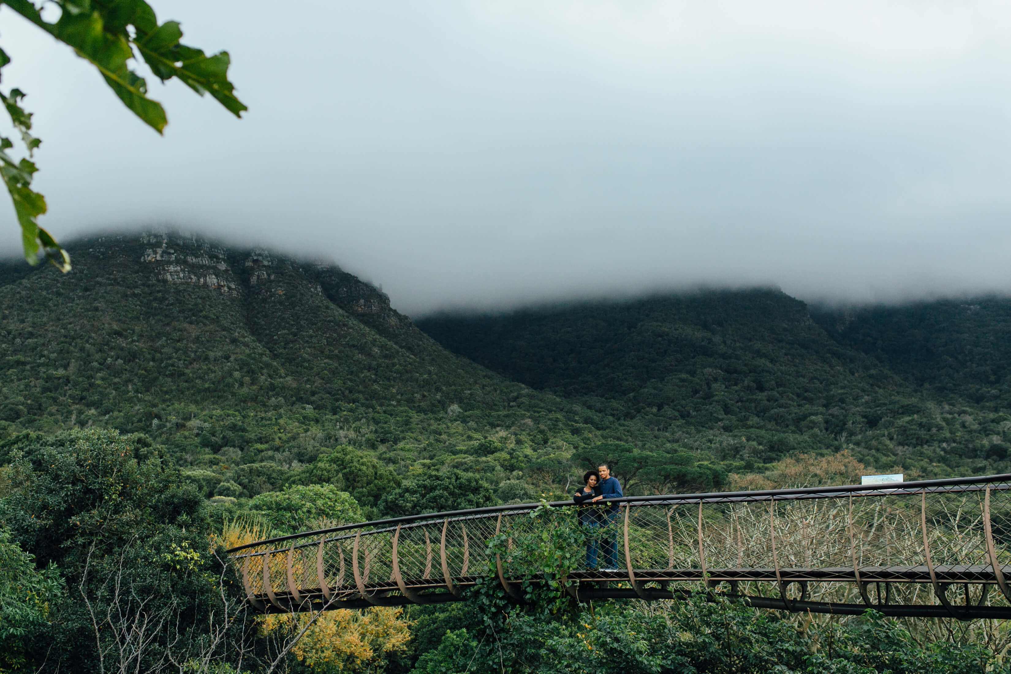 A couple stands on a bridge in a forest in Cape Town, South Africa.