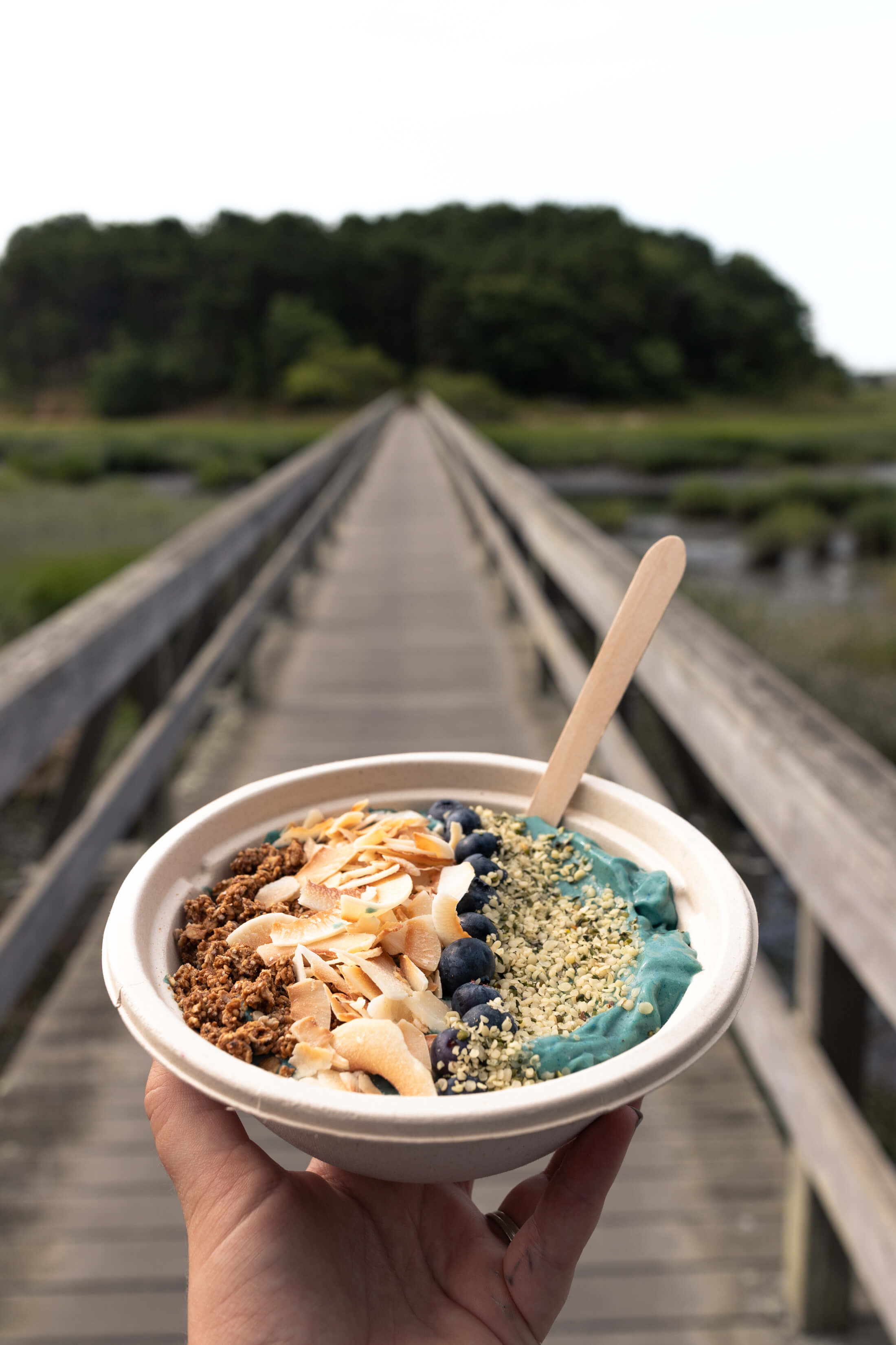A hand holding a smoothie bowl by BŌL at Uncle Tim's Bridge in Cape Cod, Massachusetts, USA.
