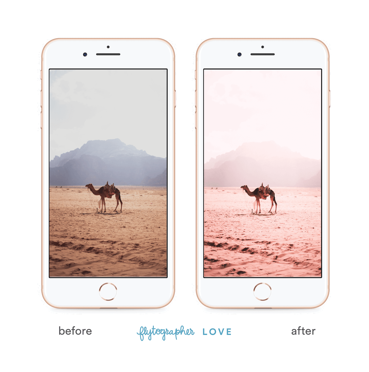 Camel picture before and after 'Flytographer Love' preset
