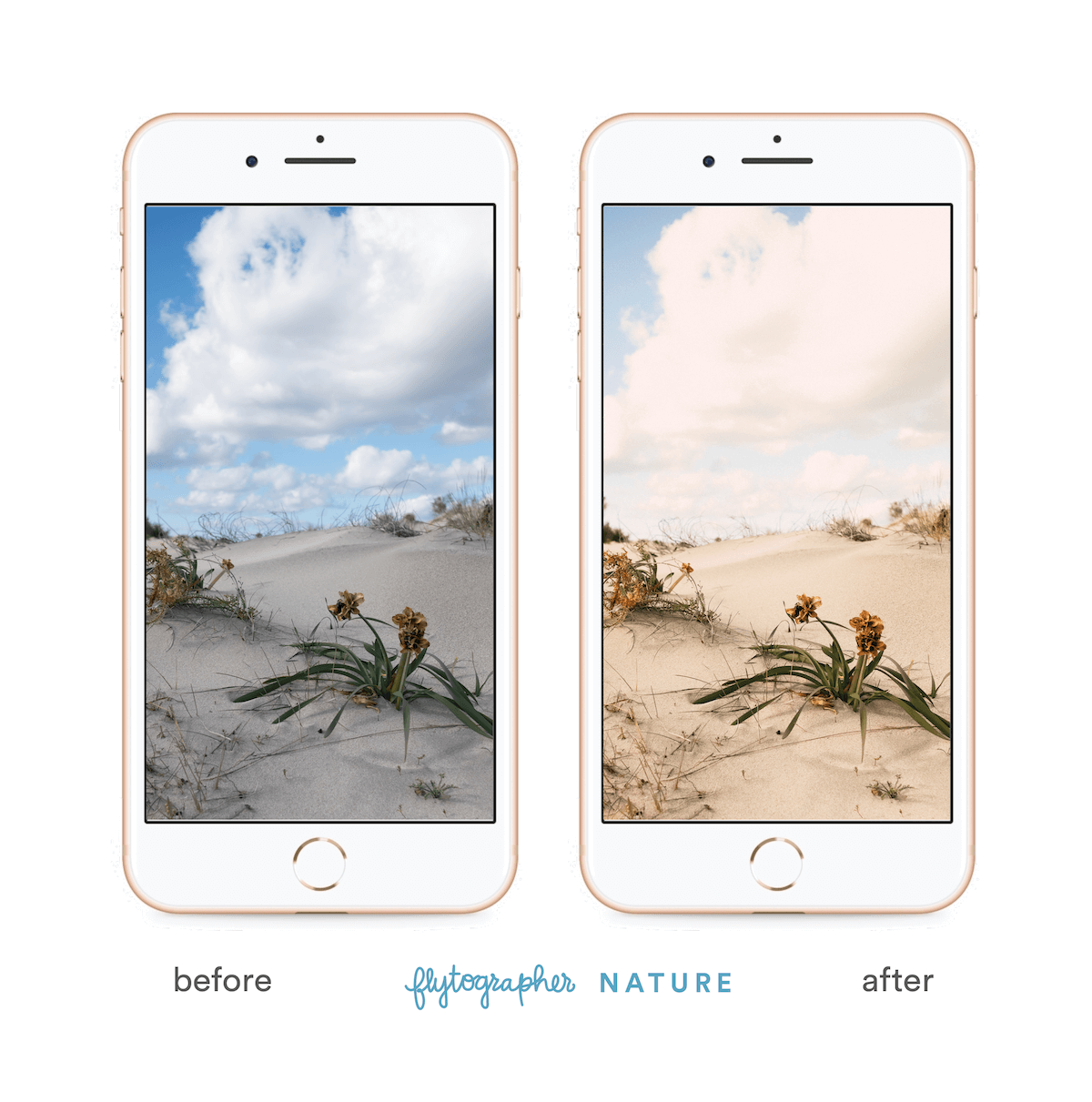 Picture of a desert plant before and after 'Flytographer Nature' preset