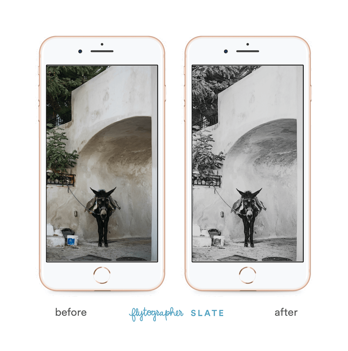 Picture of a donkey before and after 'Flytographer Slate' preset