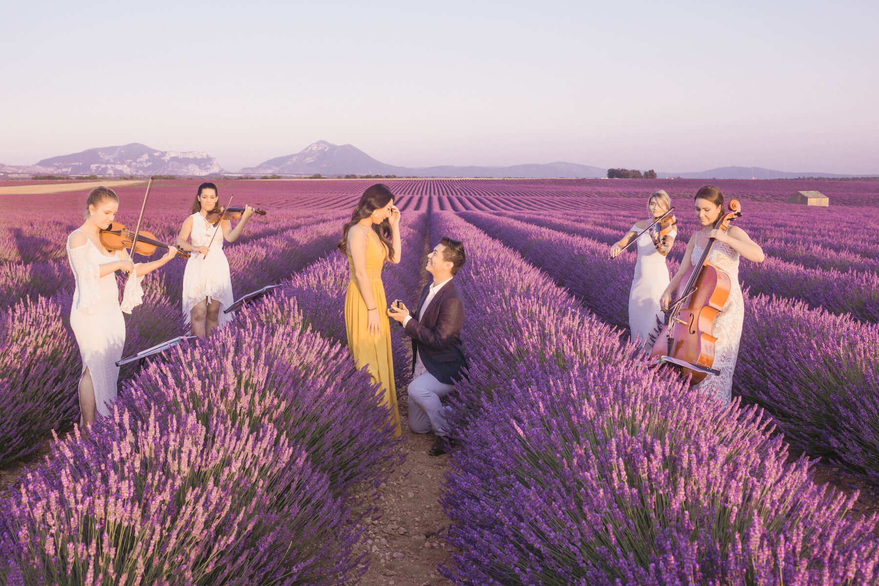 A man is proposing to a woman in a lavender field in Provence, France. There violin players surrounding them as he proposes.
