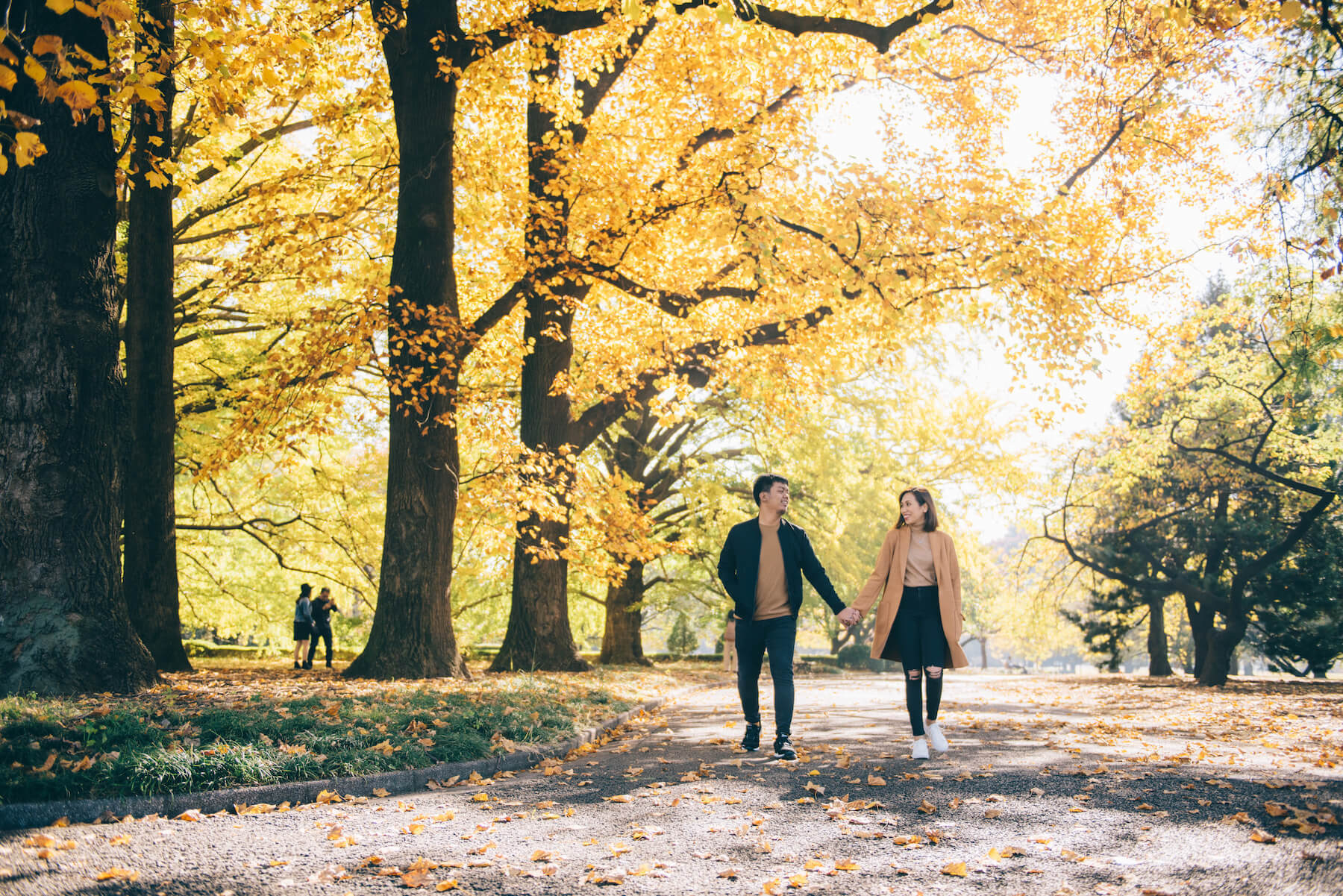 How to Have the Best Fall Photoshoot